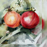 Tomatoes I 2018 / 22x25cm (O3) / Watercolour by ©janinaB.