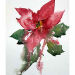 Weihnachtsstern I (13) / Aquarell 23x31cm auf Arches Grain Torchon © janinaB.