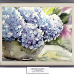 Hydrangea III 2017 (14) / Watercolour 30x40cm on Arches CP © janinaB. 2017