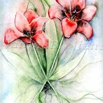 Tulpen (8) / Watercolour 24x32cm  © janinaB.