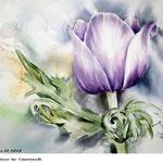 Anemone II 2018 / 30x40cm / (22) / Watercolour by ©janinaB.
