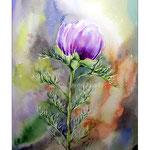 Anemonenknospe (5) / Watercolour 30x40cm