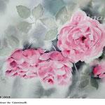 Roses XV 2018 / 30x40cm / (22) / Watercolour by ©janinaB.
