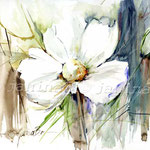 Flower I (15) / Watercolour 30x40cm / insp. Fabio Cembranelli