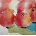 Apples II 2018 / 15x20cm / (O4) / Watercolour by ©janinaB.