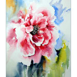 Pfingstrose (1) / Watercolour 30x40cm