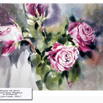 Roses VII 2017 (17) / Watercolour 30x40cm on Arches CP ©janinaB.2017
