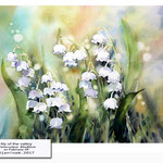 lily of the valley / Watercolour 30x40cm on Fabriano CP © janinaB. 2017 /  nicht verfügbar