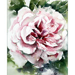 Rose I (O1) / Watercolour 15x21cm