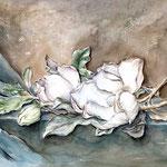 Magnolien (T3) / Watercolour 40x50cm  © janinaB.