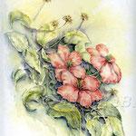 Clematis I 2010 (18) / Watercolour 24x32cm  © janinaB.