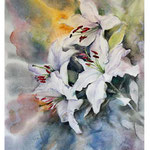 Lilies I 2017 / Watercolour 25x36cm on Arches HP ©janinaB.2017