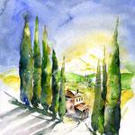 Zypressenallee (16) / Watercolour 30x40cm  ©janinaB.
