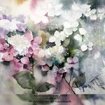 Hydrangea VII 2018 / 30x40cm (22) / Watercolour by ©janinaB.