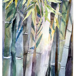 Bamboo / Watercolour 20x30cm on Fabriano CP © janinaB. 2017