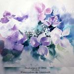 Hydrangea II 2018 (21) / 30x40cm Watercolour by ©janinaB.