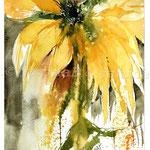 Impression flower III 2017 / Watercolour 20x30cm on Fabriano CP © janinaB. 2017