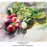 Radish I 2018 / 30x40cm Watercolour by ©janinaB.
