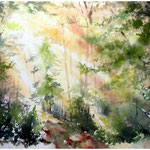 Wald (24) / Watercolour 30x40cm