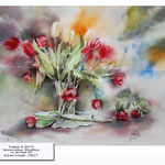 Tulips II 2017 / Watercolour 30x40cm on Arches CP © janinaB. 2017