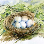 Nest I 2011 (16) / Watercolour 30x40cm