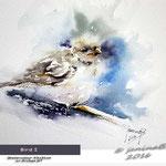 Bird I / Watercolour 23x31cm  on Arches GT © janinaB. 2016