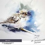Bird I (7) / Watercolour 23x31cm  on Arches GT © janinaB. 2016
