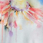 Sonnenhut (O2) / Watercolour 18x25cm