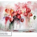 Physalis I 2017 (20) / Watercolour 30x40cm © janinaB. 2017