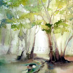 Frühling im Wald I (2) / Watercolour 30x40cm