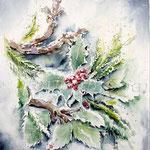 Ilex (5) / Watercolour 24x34cm  © janinaB.