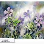 Geranium I 2017 / Watercolour 30x40cm on Arches CP © janinaB. 2017