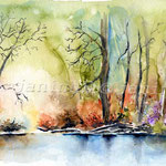 Frühling im Wald (O6) / Watercolour 18x25cm  ©janinaB.