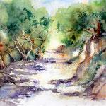 Waldweg (11) / Watercolour 30x40cm