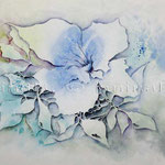 Abstract flower I 2010 (9) / Watercolour 24x34cm
