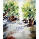 Olivenhain II 2013 (11) / Watercolour 30x40cm