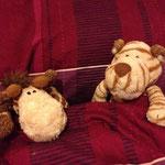 So, nun aber ab ins Bett... gute Nacht Marvin, schön das Du heute bei mir bist.