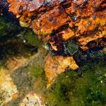 fondos y rocas multicolores.