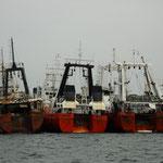 Pesqueros de arrastre... :-(       En mayoría españoles...