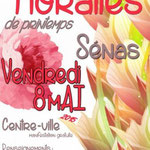 Floralies de Sénas