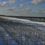 der Strand von Zingst
