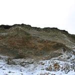 Schwalbennester - unzählige - im steil aufragenden Sand