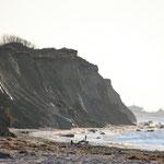 die Steilküste von Ahrenshoop