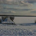 die Seebrücke von Born
