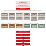 Die Organisationsstruktur der NSDAP mit ihren Gliederungen und Verbänden [© Edition Schaumberg]