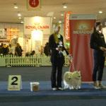 Paarklasse in Dortmund 2ter Platz mit We-Sedso Quiana und Avaro Edelweiss vom Buchenbach