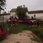 Aufstellung der Pferde im Spalier