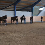 Ökumenische Pferdesegnung