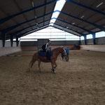 Prüfung auf dem Pferd