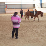 Pferdetraining unter den Augen des Richterkollegiums